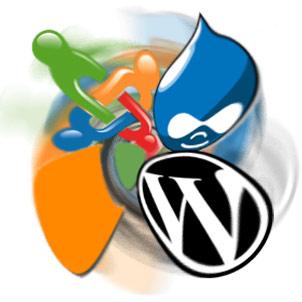 CMS,Joomla,Wordpress,Drupal, Best CMS, WCMS